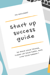 Startup Success Guide